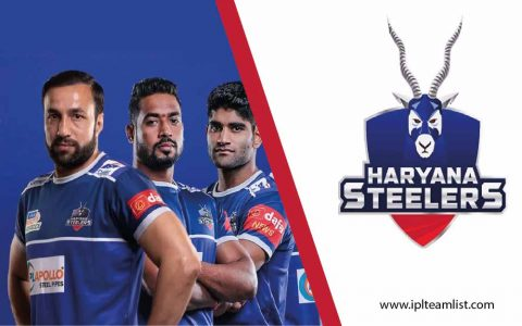 Haryana Steelers team